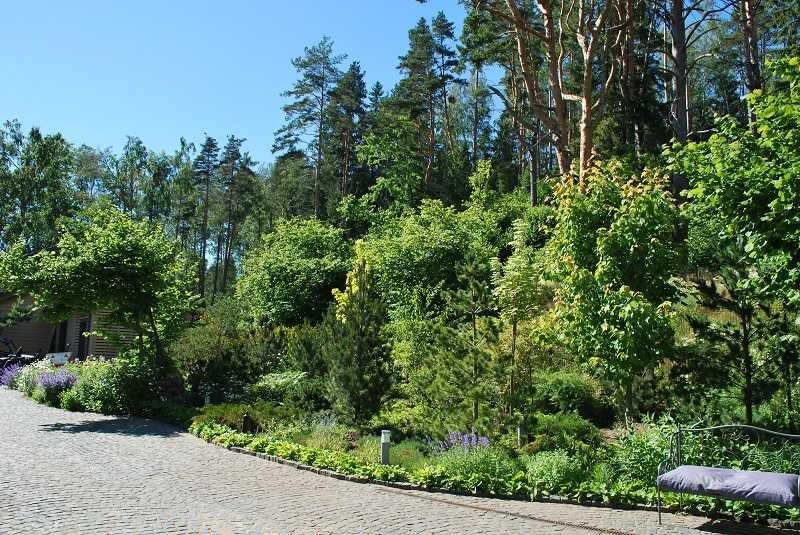 Ландшафтный дизайн дачного участка СПб эксклюзивные проекты